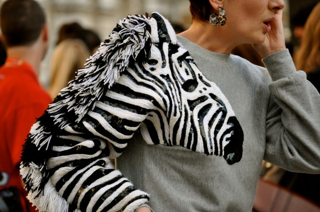 Zebra-Fashion